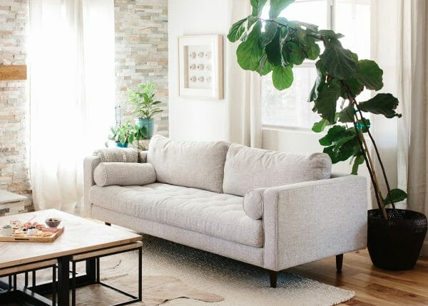 Sofas for Small Spaces | Articulate