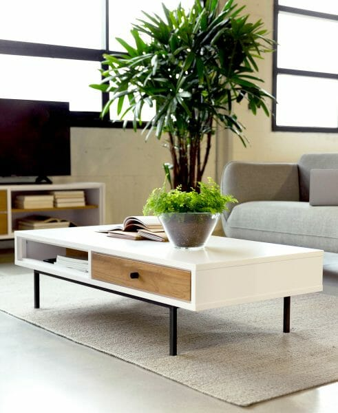 The Bios coffee table is low-profile but manages to sneak in some handy storage spots. An open space for remotes and magazines, and a drawer for your secret stash of M&Ms.