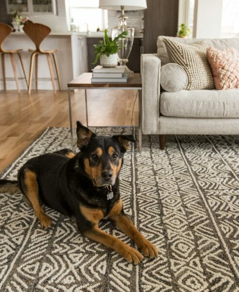 Our friends over at Flax&Twine have done a great job of layering neutral colors and patterns so their Mali rug feels like a natural addition to the room.