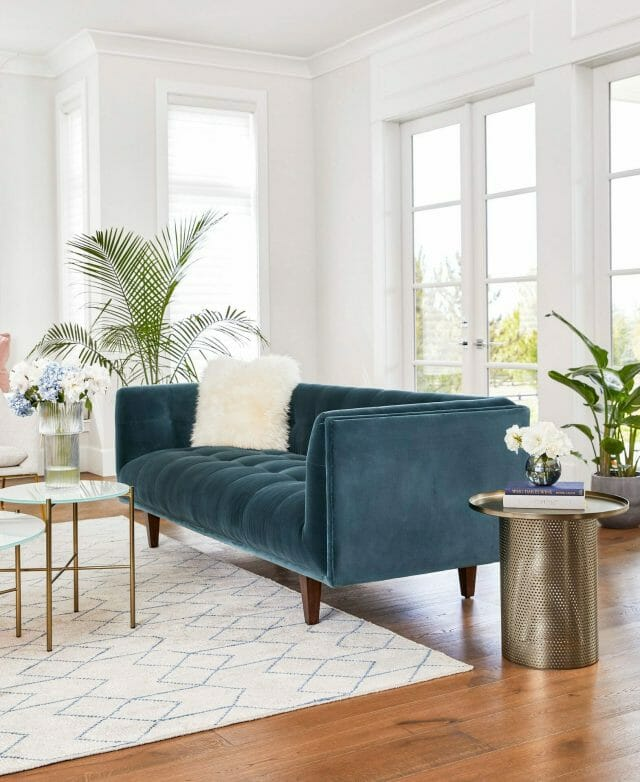 A blue velvet sofa sits in the middle of a white room with big windows. A palm sits in the background.