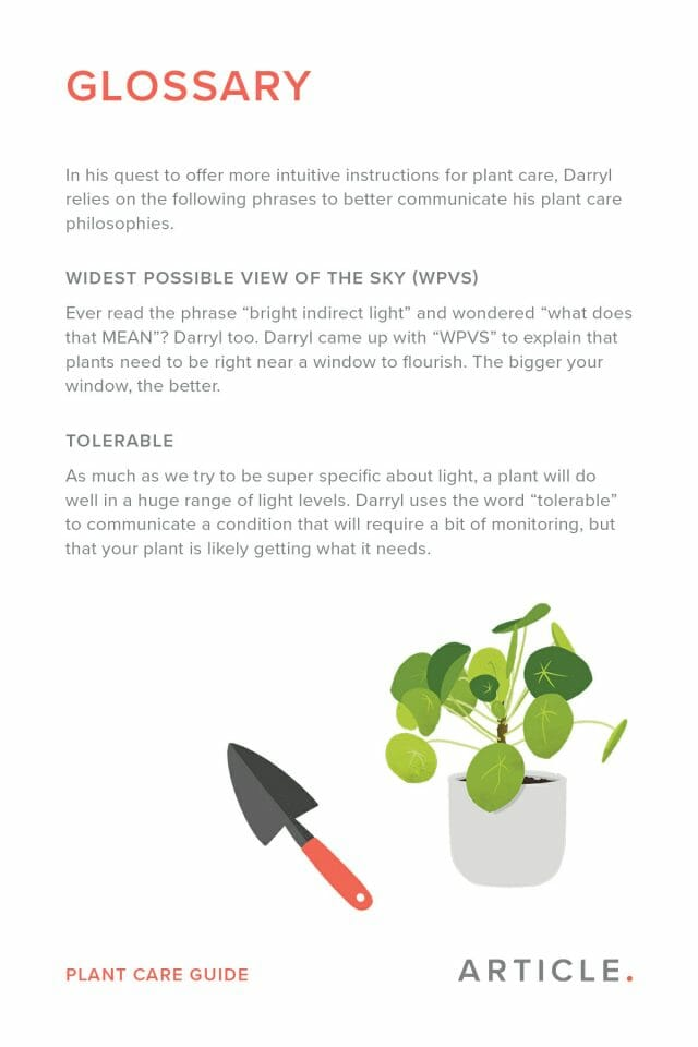 Glossary of common terms used by houseplantjournal when discussing plant care.