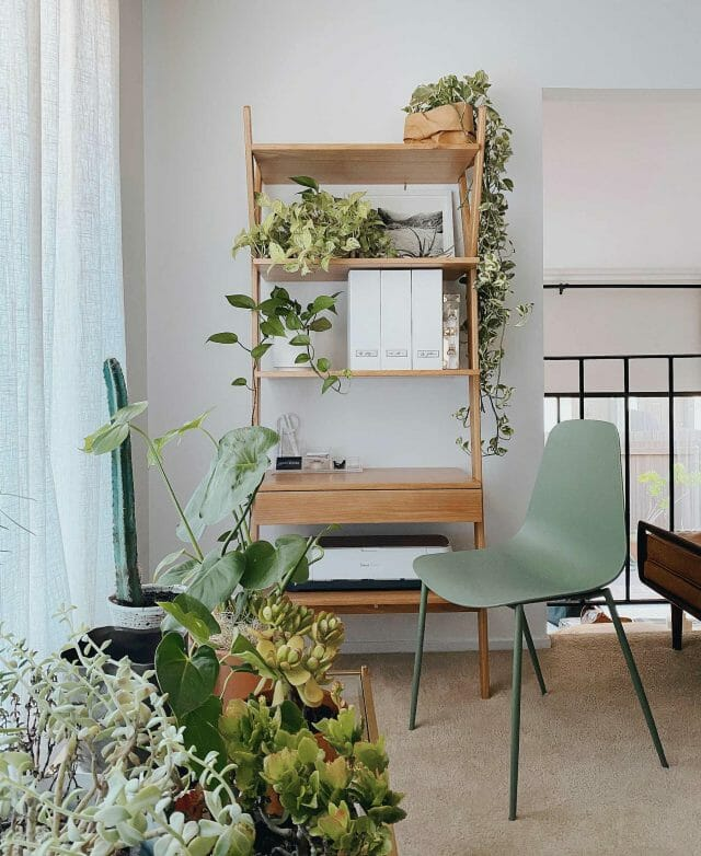 Monica Leed's space featuring the Article Lignum shelf and Aloe green Svelti chair.