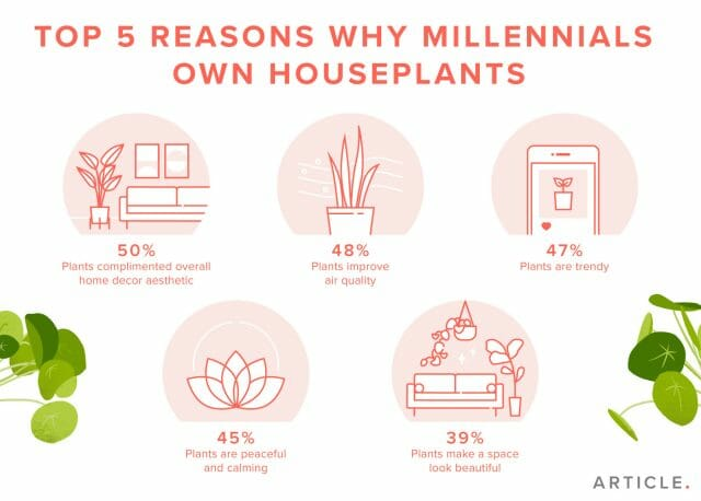 An infographic describing why millennials are buying more indoor plants.